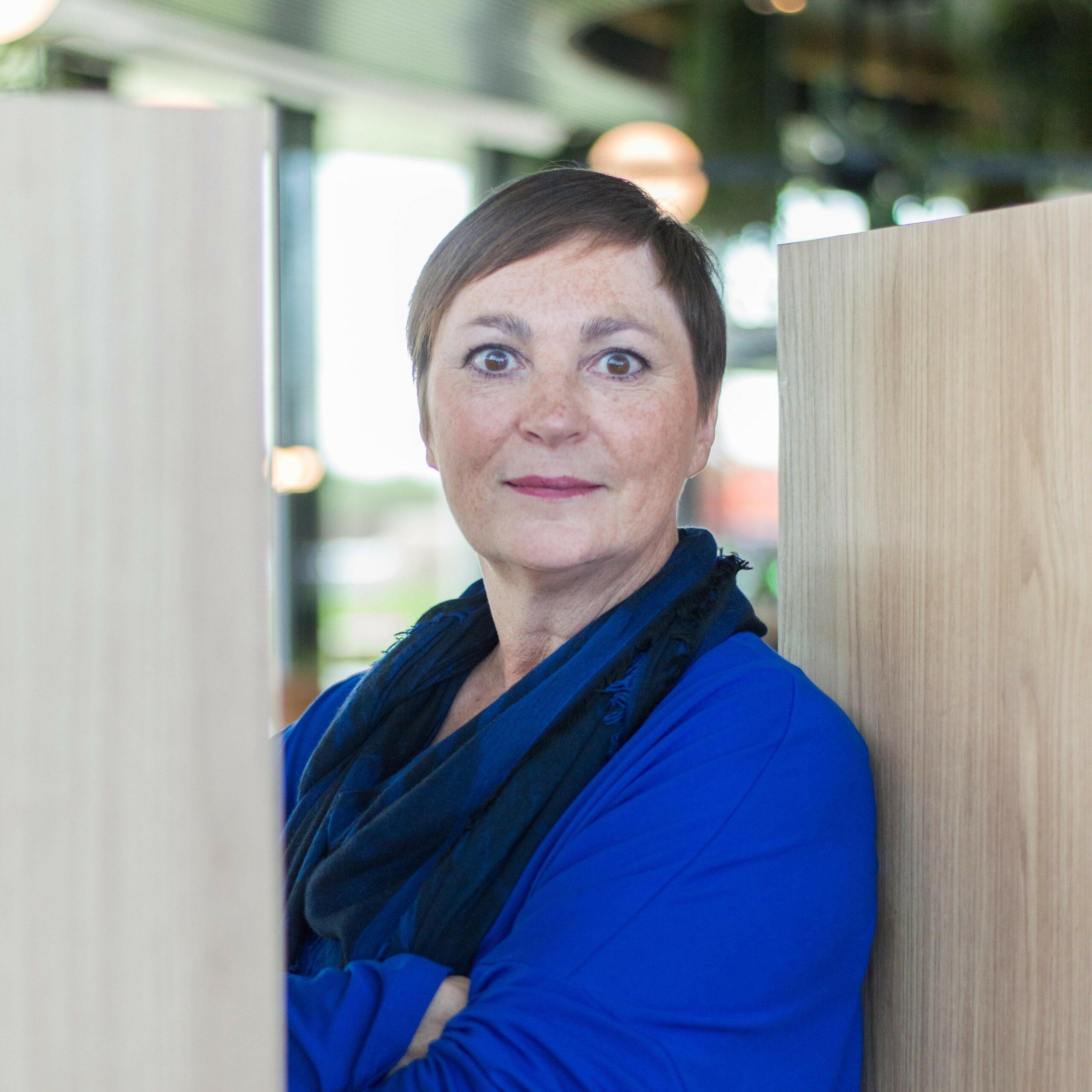 Inge Dries